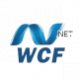 WCF Data Services bigscal